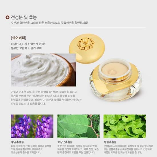 yihancarino-boho-go-cream-info3.jpg